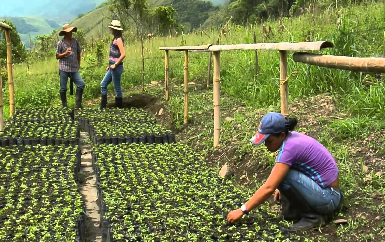 Está emergiendo la Venezuela productiva del siglo XXI — Maduro